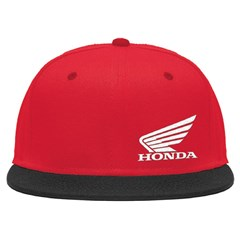 Wing Snap Back Hat