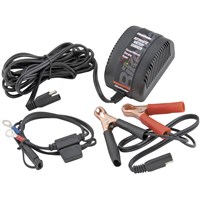 Automatic Battery Charger 900MA