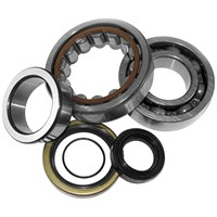 Crankshaft Bearing Kits