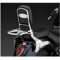 Paladin® Backrest and Luggage Rack