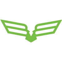 Bird of Prey Decal Lime - 6