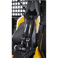 Driver 4-Point Harness
