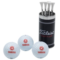 Golf Ball & T Gift Set