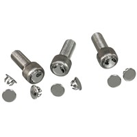Chrome Allen Bolt Plugs