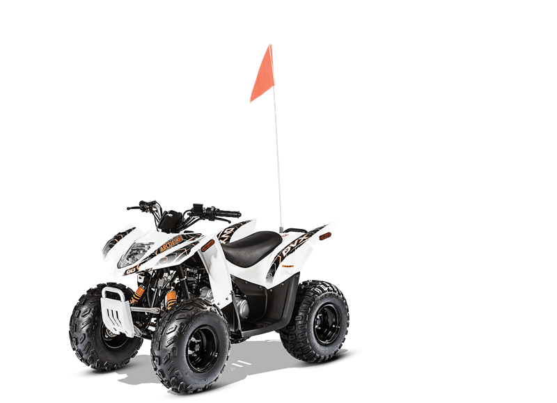 2016 Arctic Cat DVX 90