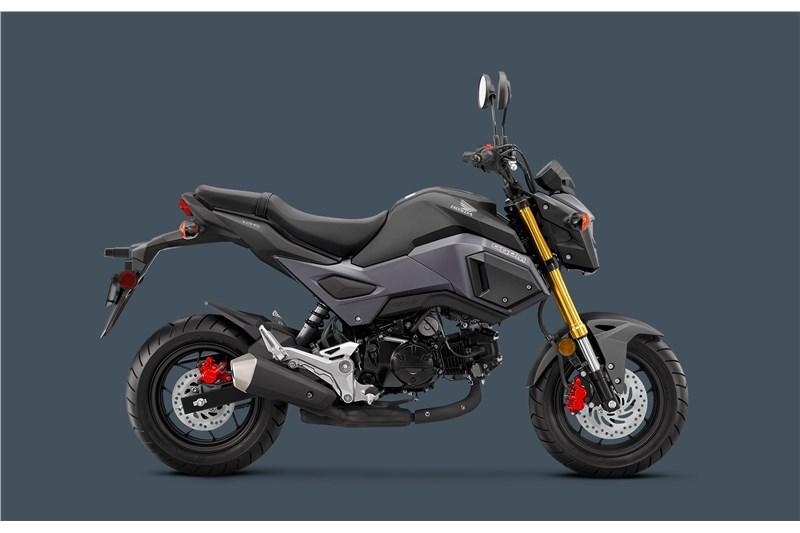 2018 Honda Grom For Sale at Babbitts Online